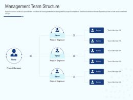 Management Team Structure Ppt Powerpoint Presentation Layouts Image