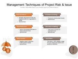 Management Techniques Of Project Risk And Issue