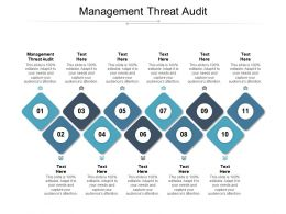 Management Threat Audit Ppt Powerpoint Presentation Infographics Professional Cpb