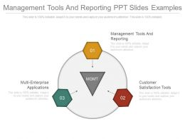 Management Tools And Reporting Ppt Slides Examples