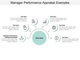 Manager Performance Appraisal Examples Ppt Powerpoint Presentation Infographics Layout Cpb