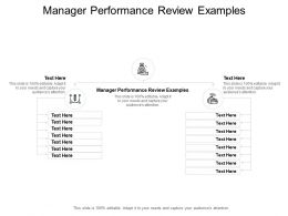 Manager Performance Review Examples Ppt Powerpoint Presentation Model Cpb