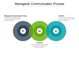 Managerial Communication Process Ppt Powerpoint Presentation File Styles Cpb
