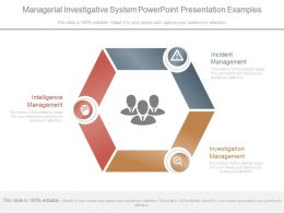 Managerial Investigative System Powerpoint Presentation Examples