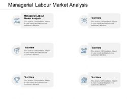Managerial Labour Market Analysis Ppt Powerpoint Presentation Ideas Graphics Download Cpb