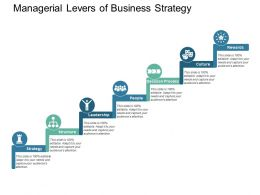 Managerial Levers Of Business Strategy