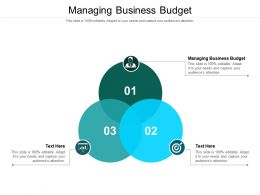 Managing Business Budget Ppt Powerpoint Presentation Icon Show Cpb