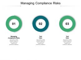 Managing Compliance Risks Ppt Powerpoint Presentation Professional Rules Cpb