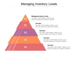 Managing Inventory Levels Ppt Powerpoint Presentation File Template Cpb