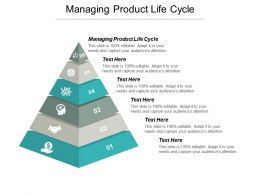Managing Product Life Cycle Ppt Powerpoint Presentation Portfolio Outline Cpb