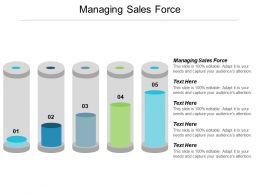Managing Sales Force Ppt Powerpoint Presentation Model Example File Cpb