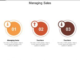 Managing Sales Ppt Powerpoint Presentation Icon Information Cpb