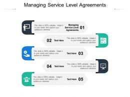 Managing Service Level Agreements Ppt Powerpoint Presentation Professional Graphic Cpb
