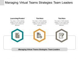 Managing Virtual Teams Strategies Team Leaders Launching Product Cpb