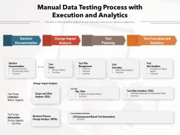 Manual Data Testing Process With Execution And Analytics