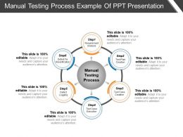 Manual Testing Process Example Of Ppt Presentation