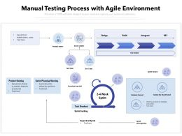 Manual Testing Process With Agile Environment