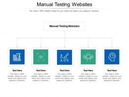Manual Testing Websites Ppt Powerpoint Presentation Show Cpb