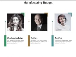 Manufacturing Budget Ppt Powerpoint Presentation File Display Cpb