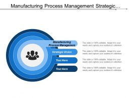 Manufacturing Process Management Strategic Vision Generic Strategies Life Cycle