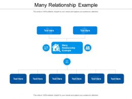 Many Relationship Example Ppt Powerpoint Presentation Outline Topics Cpb