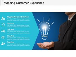 Mapping Customer Experience Ppt Powerpoint Presentation Portfolio Layout Cpb