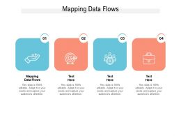Mapping Data Flows Ppt Powerpoint Presentation Pictures Backgrounds Cpb
