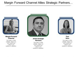 Margin Forward Channel Allies Strategic Partners Representative Value Chain