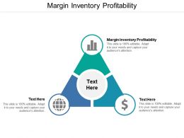 Margin Inventory Profitability Ppt Powerpoint Presentation Pictures Shapes Cpb