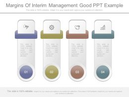 Margins Of Interim Management Good Ppt Example