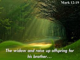 Mark 12 19 The Widow And Raise Up Off Spring Powerpoint Church Sermon