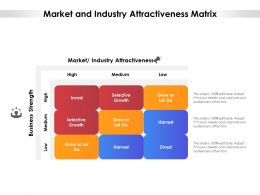 Market And Industry Attractiveness Matrix