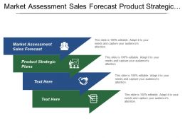Market Assessment Sales Forecast Product Strategic Plans Portfolio Management