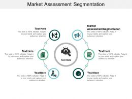 Market Assessment Segmentation Ppt Powerpoint Presentation Layouts Model Cpb