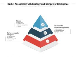 Market Assessment With Strategy And Competitor Intelligence