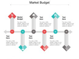 Market Budget Ppt Powerpoint Presentation File Slides Cpb