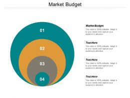 Market Budget Ppt Powerpoint Presentation Layouts Infographics Cpb