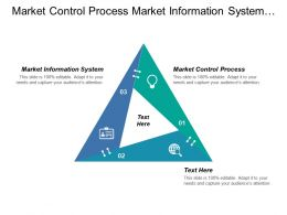 Market Control Process Market Information System Layers Ability