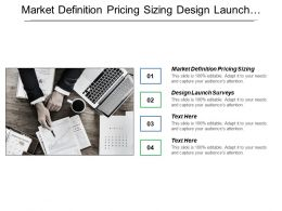 Market Definition Pricing Sizing Design Launch Surveys Identification Critical