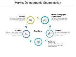 Market Demographic Segmentation Ppt Powerpoint Presentation Slides Designs Cpb
