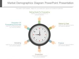 Market Demographics Diagram Powerpoint Presentation