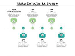 Market Demographics Example Ppt Powerpoint Presentation Professional File Formats Cpb