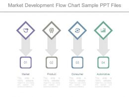 Market Development Flow Chart Sample Ppt Files