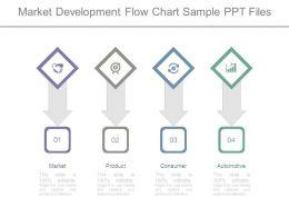 Market Development Flow Chart Sample Ppt Files