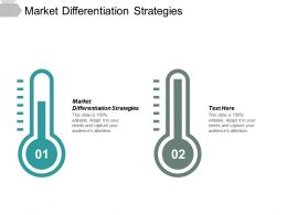 Market Differentiation Strategies Ppt Powerpoint Presentation Ideas Master Slide Cpb
