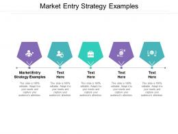 Market Entry Strategy Examples Ppt Powerpoint Presentation Gallery Information Cpb