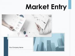 Market Entry Strategy Investment Evaluate Enterprise Business Development
