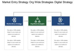 Market Entry Strategy Org Wide Strategies Digital Strategy