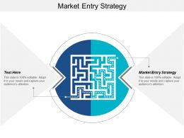Market Entry Strategy Ppt Powerpoint Presentation Ideas Background Designs Cpb