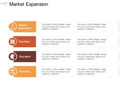 Market Expansion Ppt Powerpoint Presentation File Layout Ideas Cpb
